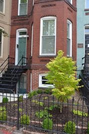 Capitol Hill townhome rental - 1890 Victorian on Capitol Hill at Eastern Market-Garden Suite