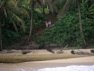 Bocas del Toro cabin photo - steps down to beach from property taken from water