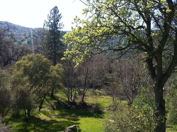 Three Rivers farmhouse rental - View from the Ranch deck