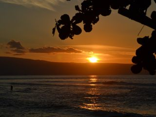 Lahaina condo photo - Walking distance to Breakwall , one of the best beginner breaks on the island