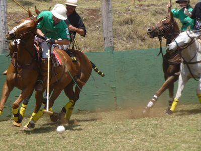 Makawao is horse country with Sunday Polo matches 10 min. away