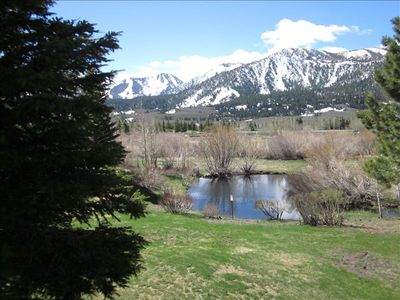 View of meadow & Mammoth Creek with Sherwins in background