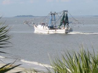 Harbor Island house photo - Shrimp boats ply the local waters...here right off the Harbor beach at low tide.