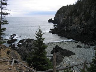 Lubec cottage photo - Hike the spectacular West Quoddy State Park trails just down the road.