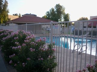 Glendale townhome photo - Community Pool and Hot Tub