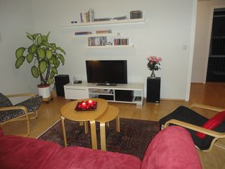 Reykjavik apartment photo - The living room with sat.-TV, DVD etc.