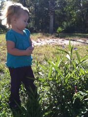 Dripping Springs house photo - Granddaughter exploring