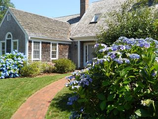 Chatham house photo - Front of House in Summer - Hydrangeas in Bloom