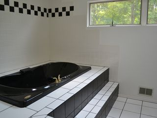 Bushkill house photo - Jaccuzi in Master bedroom