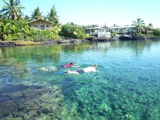 Kapoho house photo - You know you want to snorkel . . . snorkel gear provided.