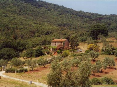 A detached house with large garden, olive grove, near the sea.