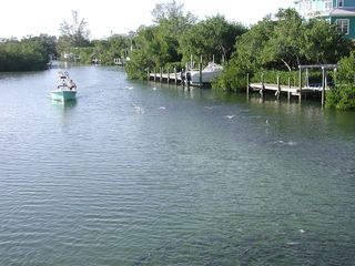 Don Pedro Island bungalow photo - Fish in the lagoon and enjoy your fresh catch for dinner!