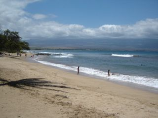 Maalaea condo photo - A Short Walk to 7 Miles of White Sand Beach to Swim, Snorkel or Surf