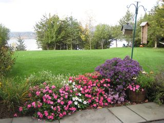 Addison house photo - Annuals and perennials surround house