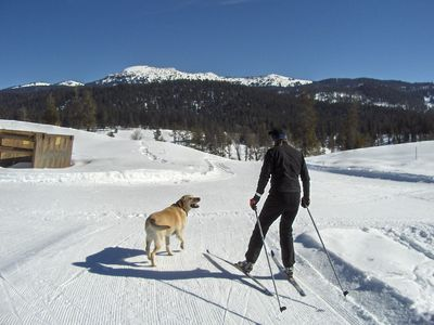 McCall house rental - Jug Mountain skate and classic ski trails out your door!