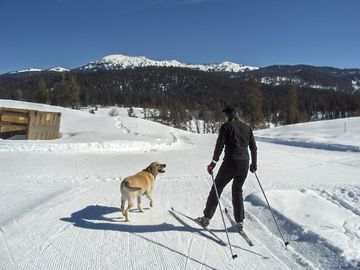 Jug Mountain skate and classic ski trails out your door!