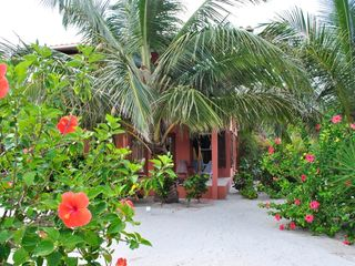 Ambergris Caye villa photo - Lush tropical plants surround the villa