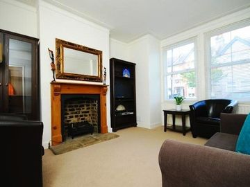 Wimbledon apartment rental - Working gas fire to cosy up in front of!