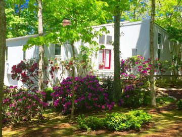 East Hampton house rental - Beautifully landscaped property