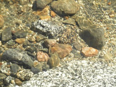 Hartland cottage rental - Rocks in the water along the shore showing the water clarity in Great Moose Lake