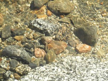 Rocks in the water along the shore showing the water clarity in Great Moose Lake
