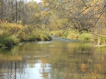 Autumn colors, quiet waters, waiting trout.