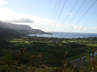 Princeville condo photo - View of Hanalei Bay from up on the Okolehau Trail - trailhead is 5 minutes away