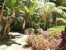 Front yard - Santa Barbara house vacation rental photo