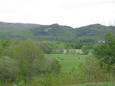 Views to the horses pasture and Mt. Cranmore
