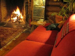 Cooperstown cabin photo - Living room in winter with cozy warm fireplace