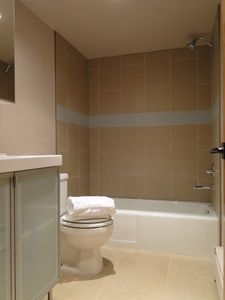 Frisco townhome rental - Polar Bear Bathroom- Stone Floor, Custom Tile accents, Grohe Fixtures!