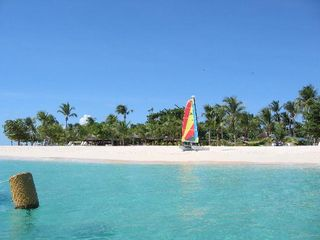 Palm Island house photo - Hobie Cat Sailing