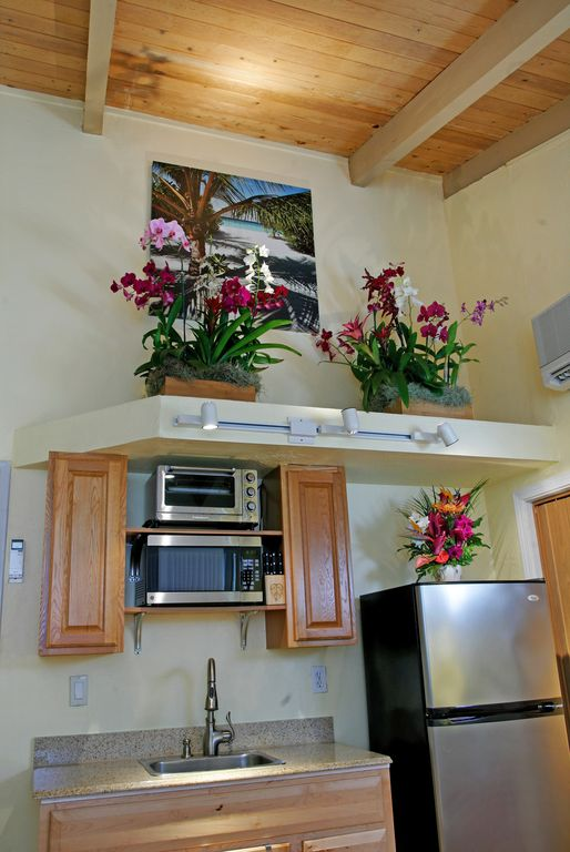 Full size refrigerator, microwave, broiler oven, brass sink. Tropical flowers.