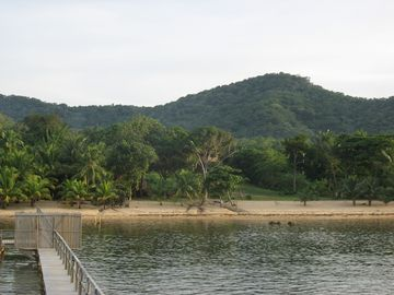 View from the dock to the coconut beach.