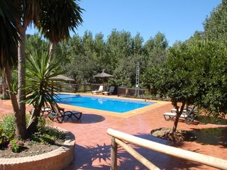 Genalguacil villa photo - 6x12 m non chlorine swimming pool with sun loungers