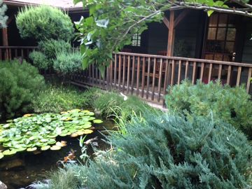 Placerville house rental - Front Porch and Koi Pond