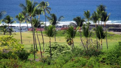 Actual view from secluded private lanai overlooking adjacent nature preserve.