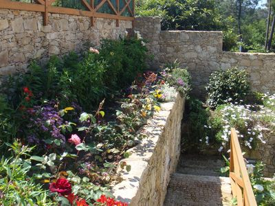 Vila Praia de Ancora villa rental - One of several flower beds