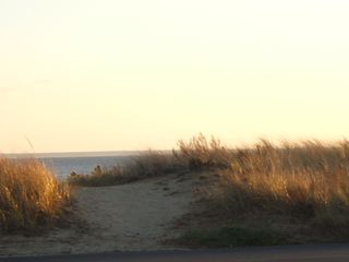 Wellfleet cottage photo - Actual view...