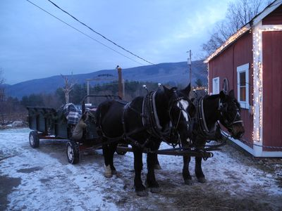 Mountain View Ranch, Danby.  Sleigh Rides and Horseback riding year round.