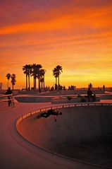Venice Beach bungalow photo - Venice Skate Park