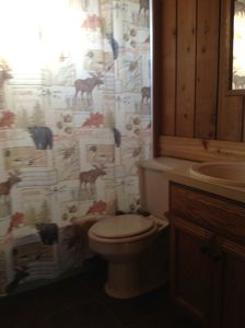 Elk Rapids cottage rental - Bath with full tub/shower,vanity/sink.