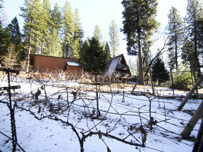 Pollock Pines cabin rental - Vineyard in winter