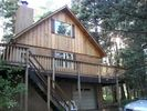 Cabin Exterior - Westcliffe cabin vacation rental photo