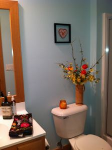 Newly updated guest bathroom