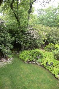 Enjoy peace, solitude and bird song from five acres of paths and rhododendron