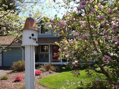 Welcome to Birdsong Cottage! Many Birdhouses Provide Additional Entertainment!