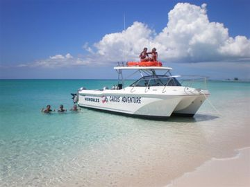 diving excursions that we can arrange for you
