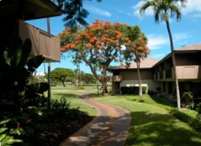 Garden Walk to Beach Maui Eldorado