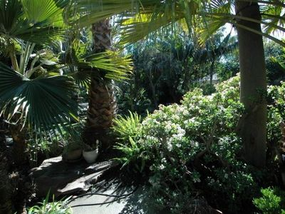 Lush green garden just outside your private door where you can relax